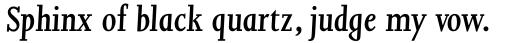 Joanna Std SemiBold Italic sample