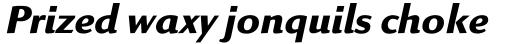Linex Sans Std Bold Italic sample