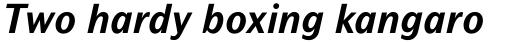 Mahsuri Sans Std Bold Italic sample
