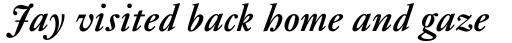 Janson Pro Bold Italic sample