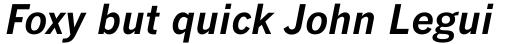 Monotype News Gothic Std Bold Italic sample