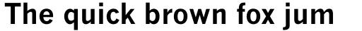 Monotype News Gothic Pro Bold sample
