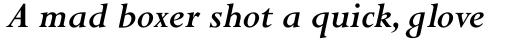 Perpetua Pro Bold Italic sample