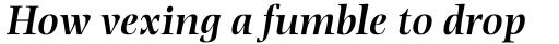Photina MT Pro SemiBold Italic sample