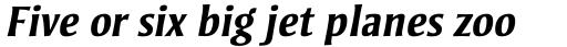 Strayhorn Std Bold Italic sample