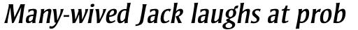 Strayhorn Std Italic sample