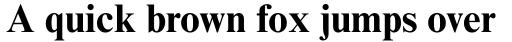 Times New Roman Std Bold sample