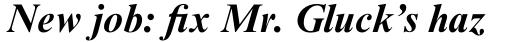 Times New Roman Std Bold Italic sample