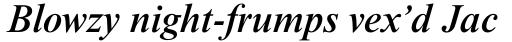 Times New Roman Std Medium Italic sample