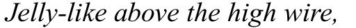 Times New Roman Std PS Italic sample