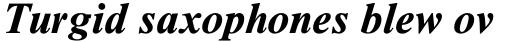 Times New Roman Std Seven Bold Italic sample