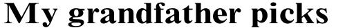 Times New Roman Std Small Text Bold sample