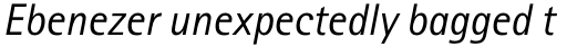 Rotis Sans Serif Pro 56 Cyrillic Italic sample