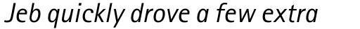 Rotis Sans Serif Pro 56 Greek Italic sample