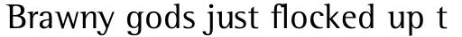Rotis Semi Serif Pro Cyrillic sample