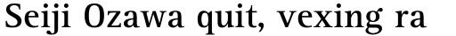 Rotis Serif Pro 65 Cyrillic Bold sample