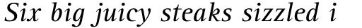 Rotis Serif Pro 56 Cyrillic Italic sample