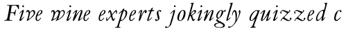 Van Dijck Pro Italic sample