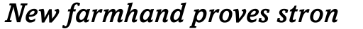 Amasis Pro Medium Italic sample