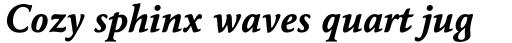 Maxime Pro Bold Italic sample