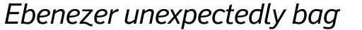 Felbridge Pro Italic sample