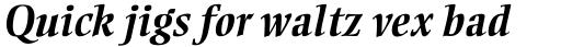 Ellington Pro Bold Italic sample