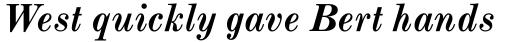 Monotype Modern Pro Bold Italic sample