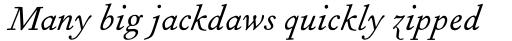 Fournier Pro Italic sample