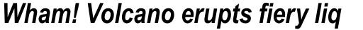 Arial Pro Narrow Bold Italic sample