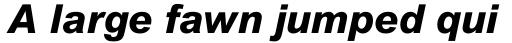 Arial Pro ExtraBold Italic sample