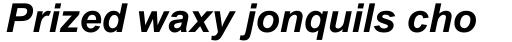 Arial Pro Cyrillic Bold Italic sample
