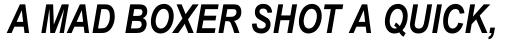 Arial Pro Greek Narrow Bold Italic sample