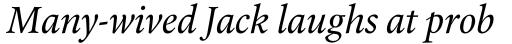 Laurentian Pro Italic sample