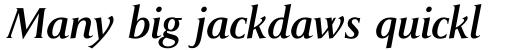Pompei Pro Italic sample