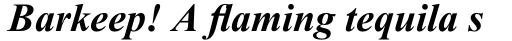 Times New Roman Pro PS Bold Italic sample