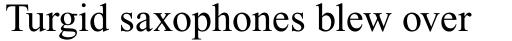 Times New Roman Pro PS Cyrillic Regular sample