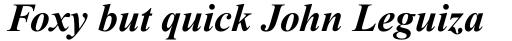 Times New Roman Pro PS Cyrillic Bold Italic sample