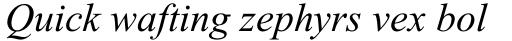 Times New Roman Pro PS Greek Italic sample