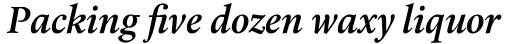 Laurentian Pro SemiBold Italic sample