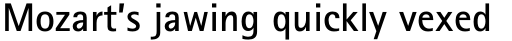 Rotis Sans Serif Paneuropean W1G 65 Bold sample