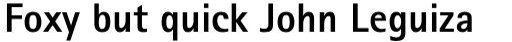Rotis Sans Serif Paneuropean W1G 75 ExtraBold sample