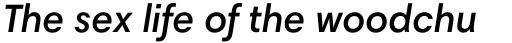 Harmonia Sans Pro SemiBold Italic sample