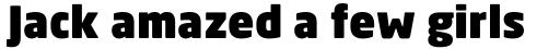 Neo Sans Arabic Std Ultrablack sample