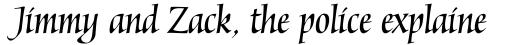 Mantegna Italic sample