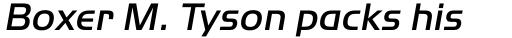 ITC Handel Gothic Pro Medium Italic sample