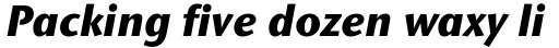 Stone Sans II Pro ExtraBold Italic sample