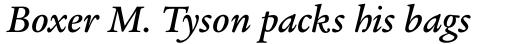 Legacy Serif Std Medium Italic sample