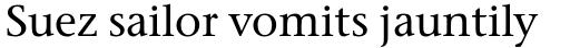 Stone Serif Std Medium sample