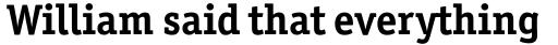 Officina Serif Pro Bold sample