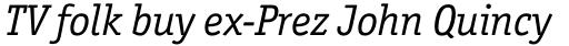 Officina Serif Pro Book Italic sample